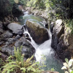 Ruta Nativa Cascada