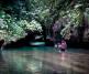 Tanamá River